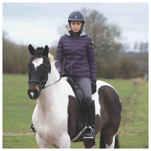 Equetech Chalgrove Packable Coat in Blackberry