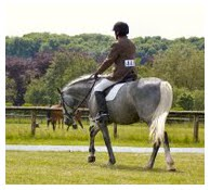 Rich and_dressage_test_2