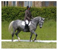 Rich and_dressage_test_3