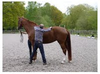wymarsh dressage_man_and_horse