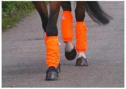 STAY SAFE AND BE SEEN IN STYLE - Golly Galoshes bring colour