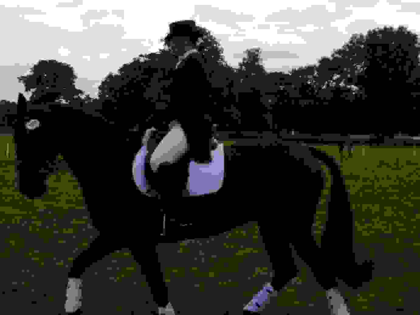 tamsin dressage